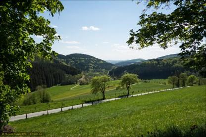 Der Blick über die Hügellandschaft zwischen Girkhausen und Bad Berleburg.