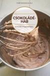 Gyors csokoládéhab készítése