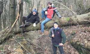 Il Gelicidio di dicembre non ha risparmiato la Via Postumia, i volontari sono all'opera per rimettere a posto