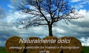 Le fotografie dei paesaggi di Volpedo e Pozzol Groppo in Mostra a Ca' Stringa