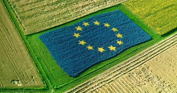 Bandiera cee in un campo di grano