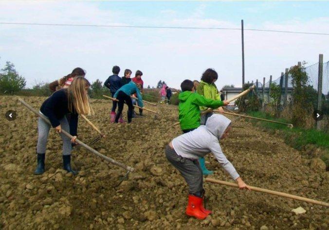 UN momento della fattoria didattica a Costa Vescovato