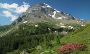 Approvata la Legge regionale che istituisce il Parco Naturale dell'Alta Val Borbera