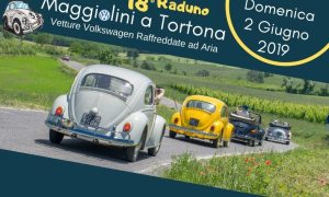 Maggiolini a Tortona, la carovana delle Volkswagen pronta a sfilare sui Colli tortonesi