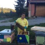 I danni del maltempo all'apicoltura