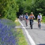 Gita in bici sui Colli tortonesi