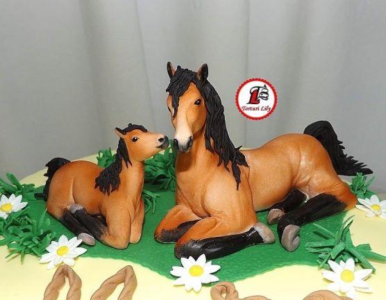 Tort caluti_echitatie_2