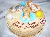 tort pisicute 111