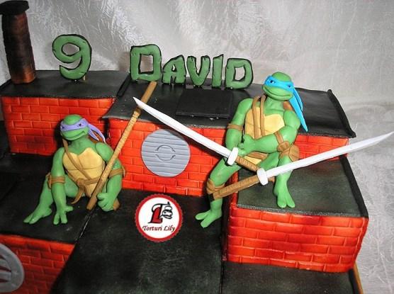 tort testoase ninja david 55