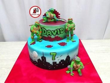 tort-testoase-ninja_ninja-turtles-3_david-_4