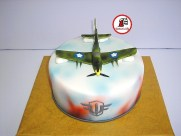 tort world of warplanes