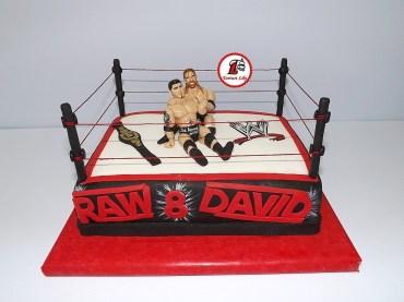 tort wrestling 2