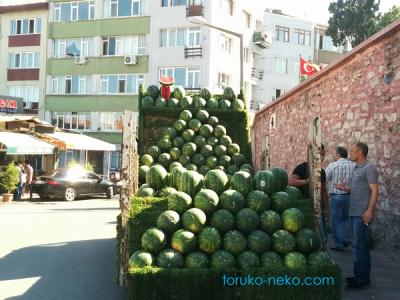 watermelon トルコ 猫歩き ネコ 画像 産地直送のスイカを車に積んでそのまま販売している写真