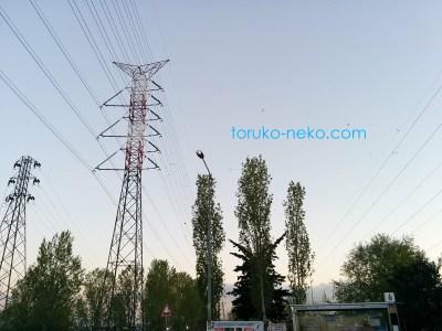トルコ イスタンブールの高圧電線の写真 画像