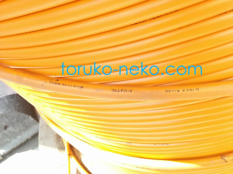 インターネットの光ファイバーケーブルの写真 オレンジ色 トルコ猫歩き