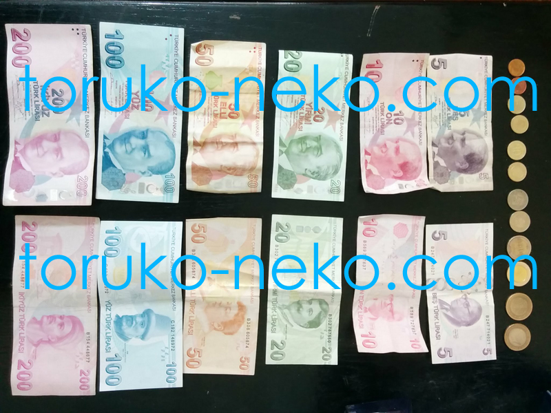 トルコリラ レート為替 トルコの貨幣 コイン リラ クルシュ 紙幣 全掲載の画像 写真