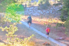 On the trail. Notice the crappy sun glare? Yep forgot the camera hood.