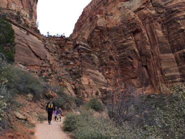 The view towards Angels Landing