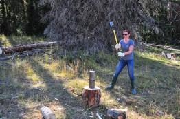 woodcutting-9-14-2