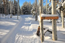 A nice covering of fresh snow at Bear Claw yurt.