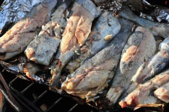 Delicious trout!