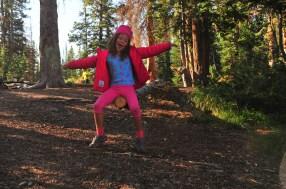More tree dancing