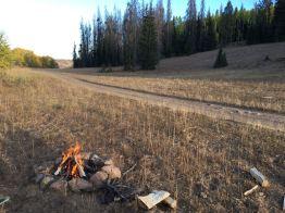 A nice little evening fire.