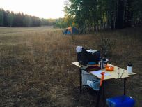 Woodcutting camp, 2016