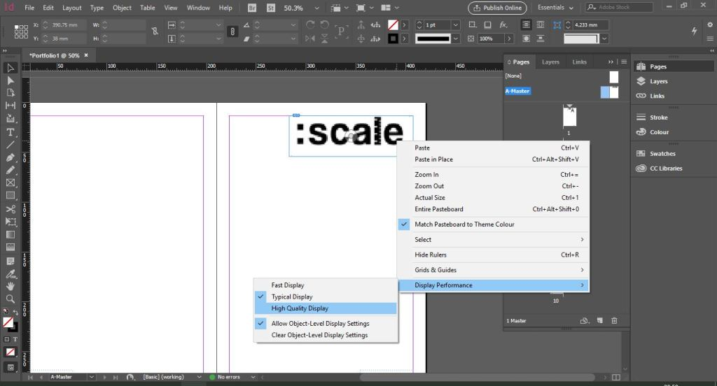 adding_images_frame.AdobeInDesign5Skills