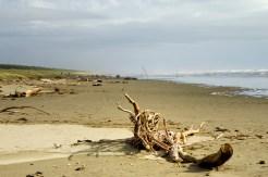 Waitarere Beach looking south