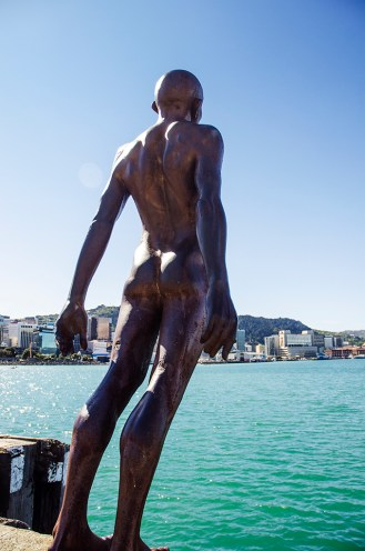 Solace from the right - Wellington