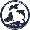 http://www.ecoawards-namibia.org/marwise