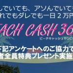 BEACH CASH 365 ( ビーチキャッシュ365 ) は稼げない?