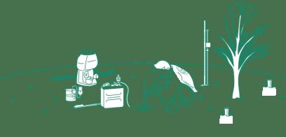 樹木医診断/土壌調査イラストイメージ