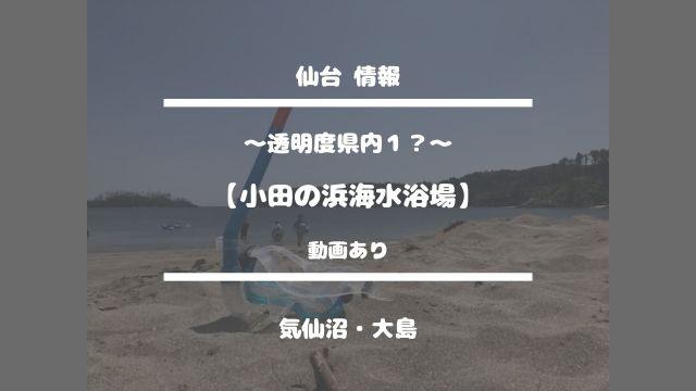 仙台情報【〜透明度県内1?〜小田の浜海水浴場】気仙沼・大島