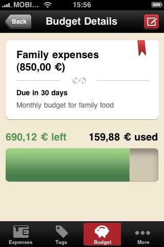 Family budget details
