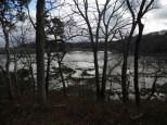 Marsh1