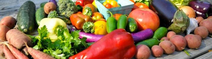cropped-vegetalesm.jpg