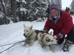 dogsledding - 10