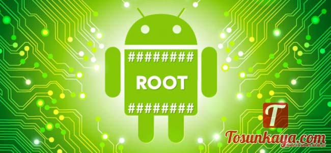 android-root-650x300