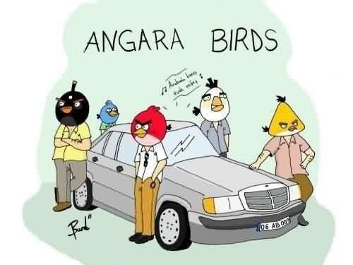 angara-birds_267010_m