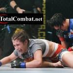 MMA moves