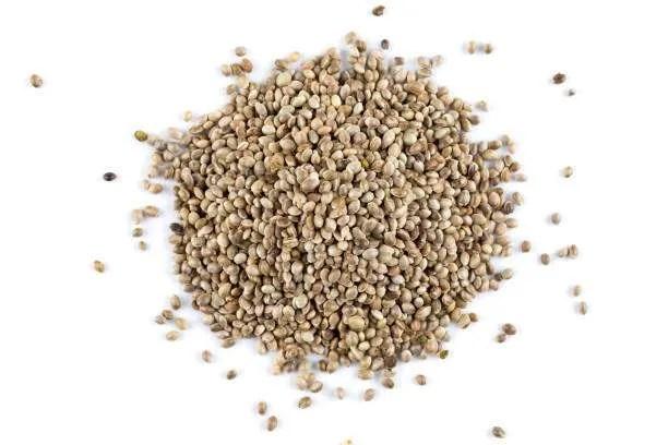 Hemp-Seed-1kg