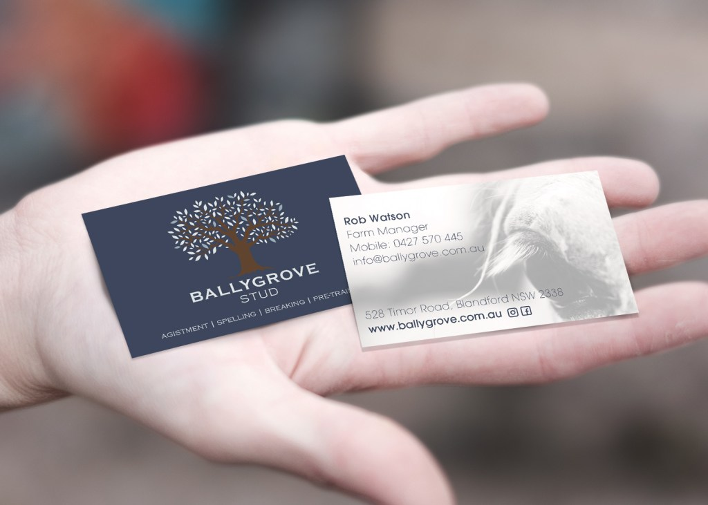 BallyGrove Business Card Design
