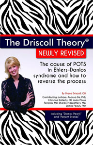 Driscoll-Theory-book-cover-on-Amazon