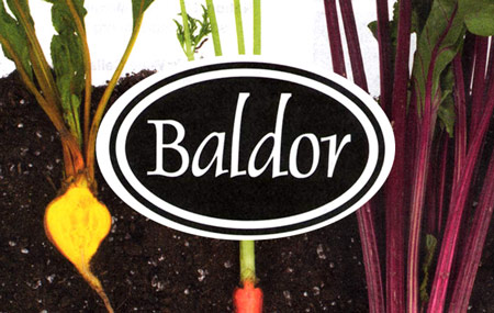 Baldor Specialty Foods Hunts Point