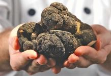 Mushroom House Truffles