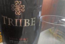 Triibe