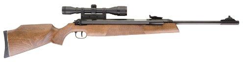 RWS model 54 review