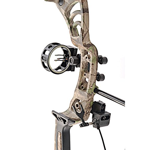 Leader compound bows for the money